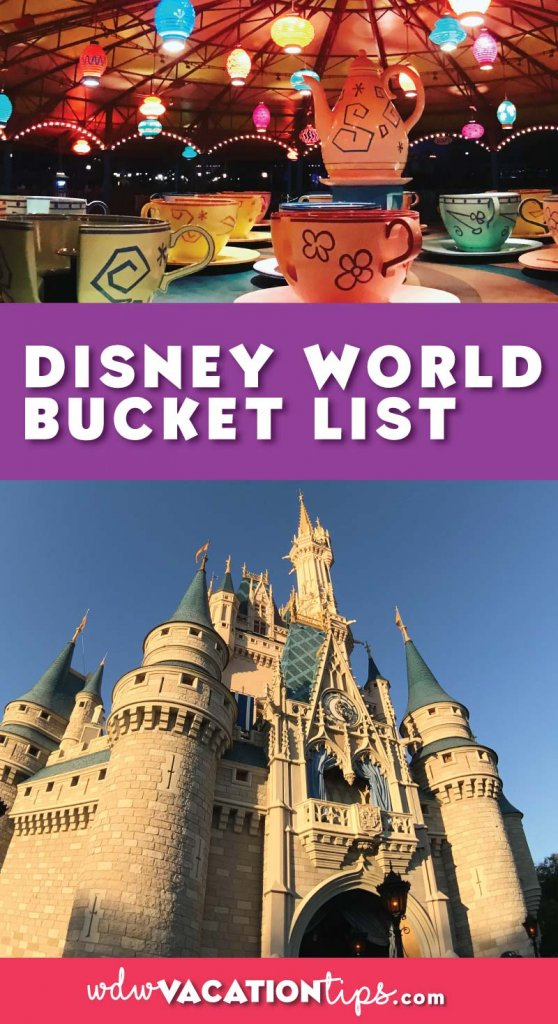 The ULTIMATE Disney bucket list. What is on your Disney bucket list.