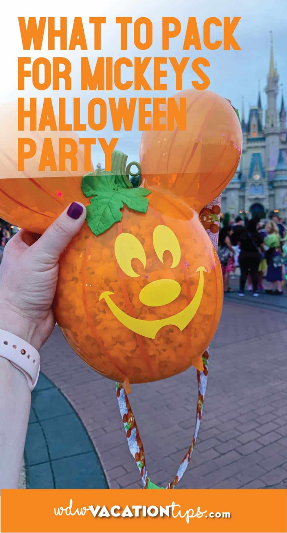 Things to Pack for Mickey's Not So Scary Halloween Party 1