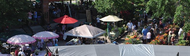 saturday-farmers-market