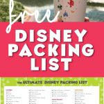 FREE Disney Packing List 1
