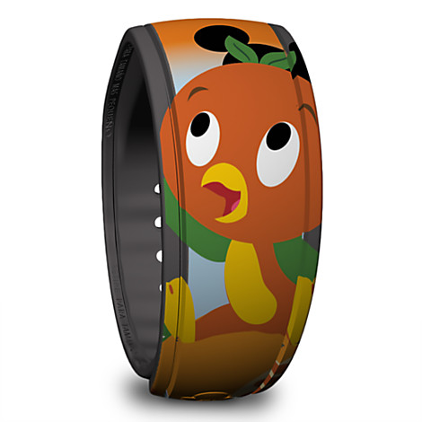 Who doesn't need more MagicBands? They are a great way to remember your special vacation plus they are invaluable while staying at a Disney resort.