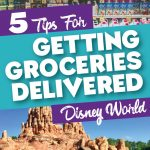 How to get Groceries Delivered to your Disney Resort • WDW