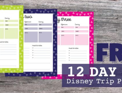 WDW Vacation has a custom made Disney Vacation Planner just for you and 100% FREE