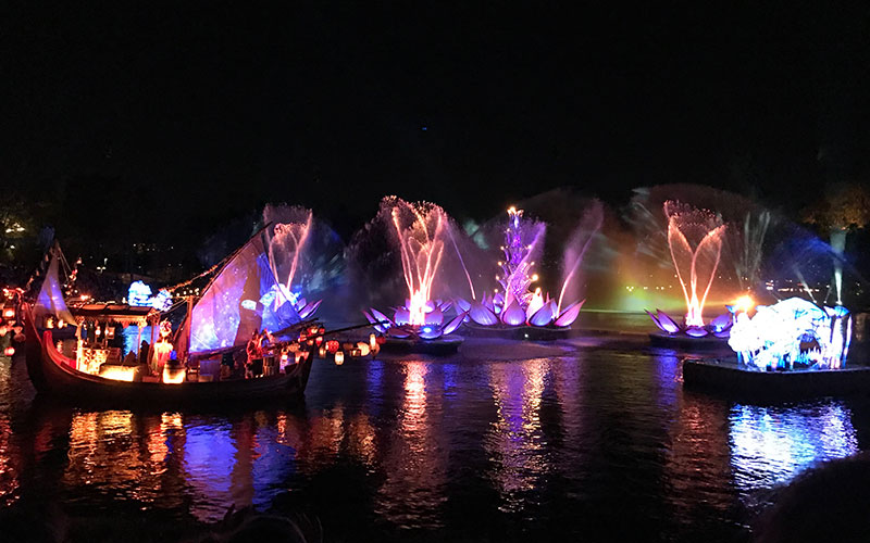 Rivers of Light is a beautiful water show at the Animal Kingdom.