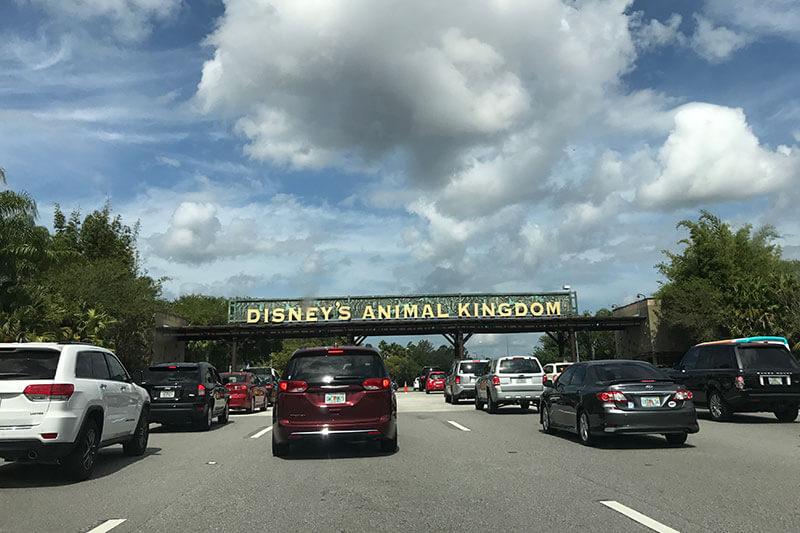 Parking entrance to animal kingdom