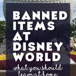 Banned items at Disney World