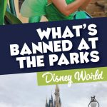 Items banned at Disney World theme parks