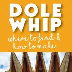 Dole Whip is one of the most iconic snacks of Disney World. Tips of where to find Dole Whip and how to make your own Dole Whip at home!