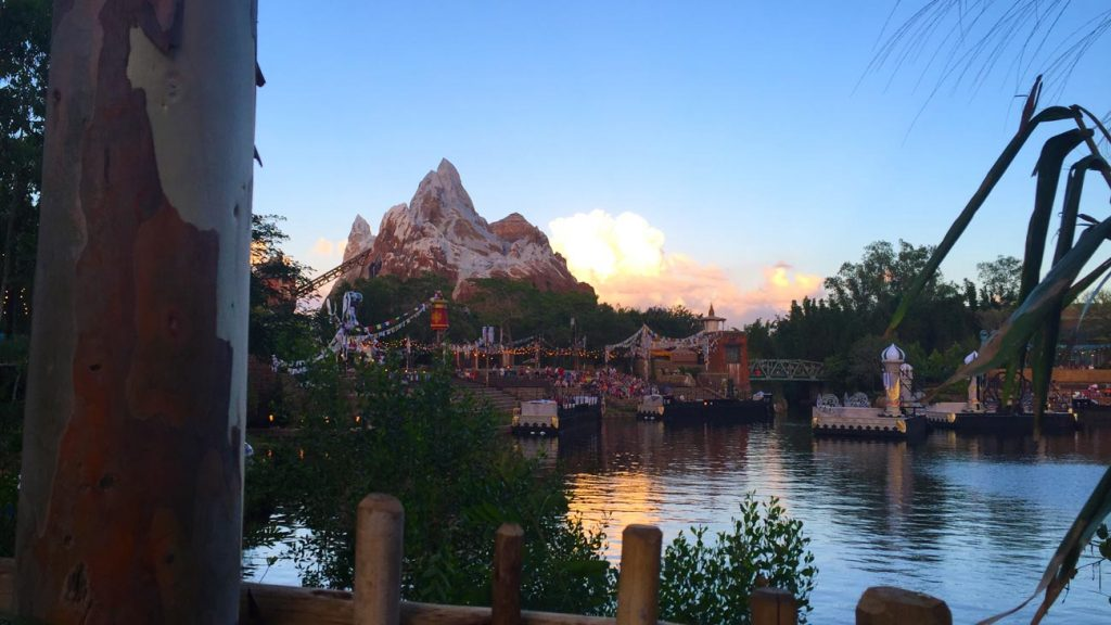 Expedition Everest roller coaster at Animal Kingdom
