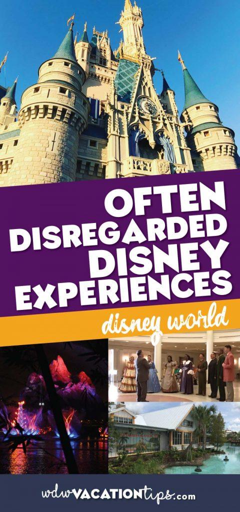 Often Disregarded Disney experiences