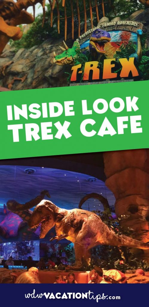 Trex Cafe is the perfect spot in Disney Springs to bring your kids. The atmosphere is really the draw at this Disney dining spot.
