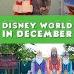 Disney World December