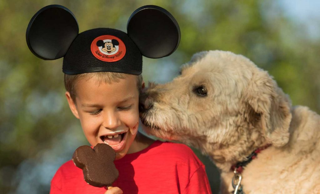 Dogs now allowed at select Disney World hotels.