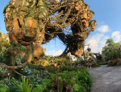 The Secret Shortcuts of Disney World 11