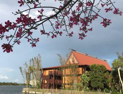 Polynesian Resort to Remain Closed for Moana Makeover 11