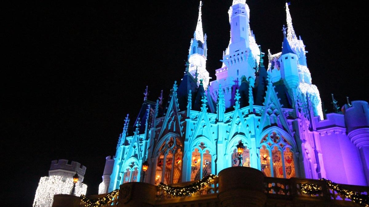 What to do When it's Crowded at the Magic Kingdom 1