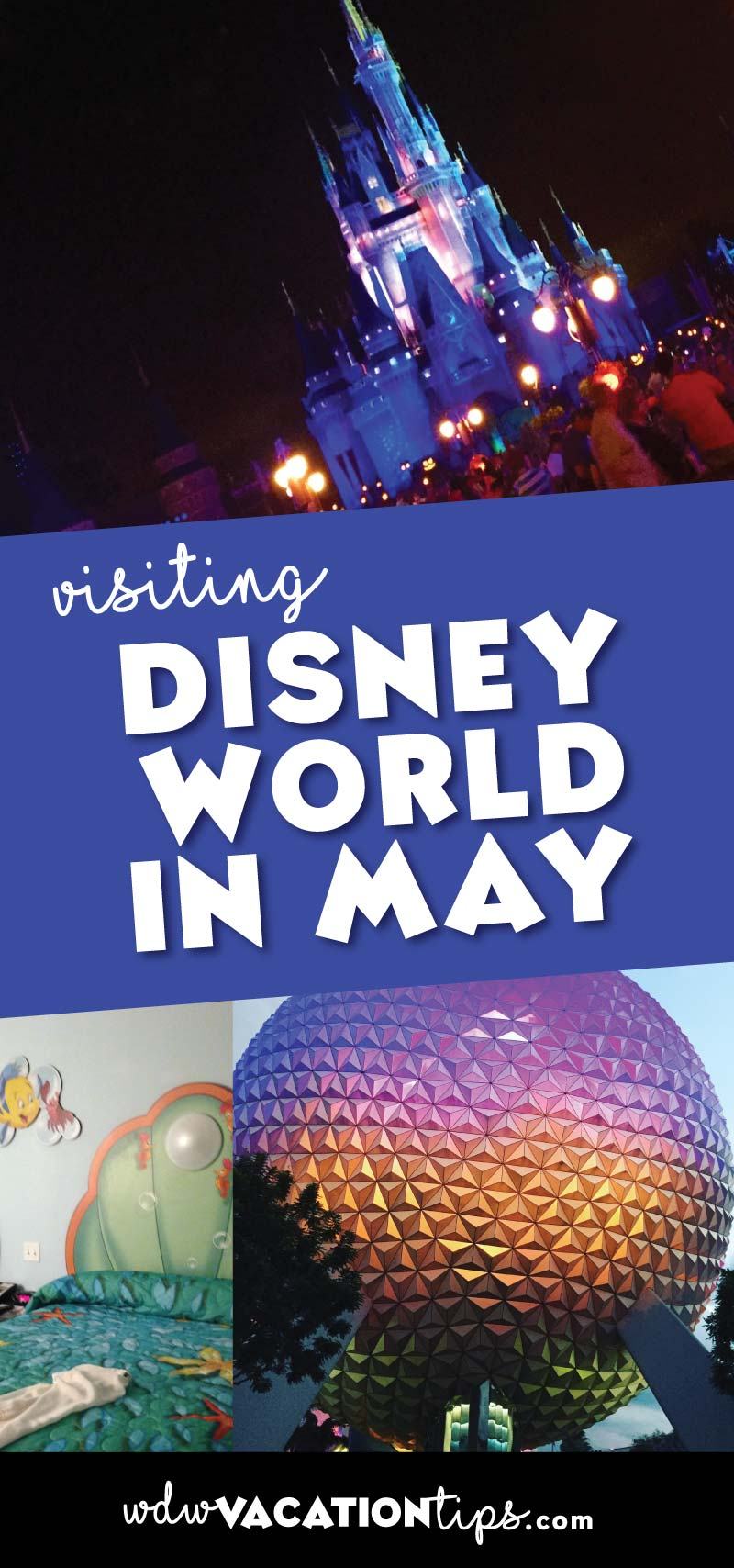 Disney World in May kicks off the start of summer. I would avoid the last week of this month as the crowds pour in for the holiday weekend and start of summer.