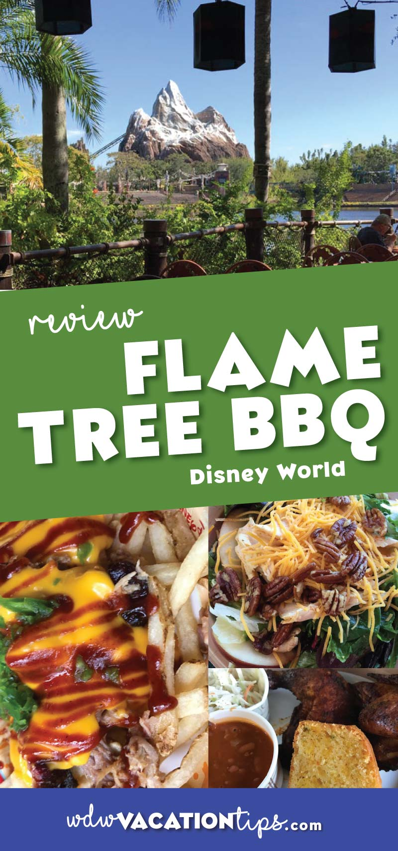 The Flame Tree BBQ is a quick service restaurant located near the Tree of Life at the Animal Kingdom in Walt Disney World. This is THE BEST quick service location option at the Animal Kingdom.