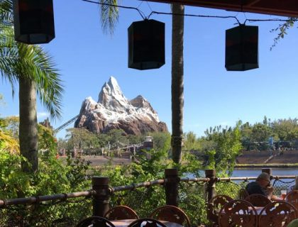 Things you Probably Never Knew About Expedition Everest 3