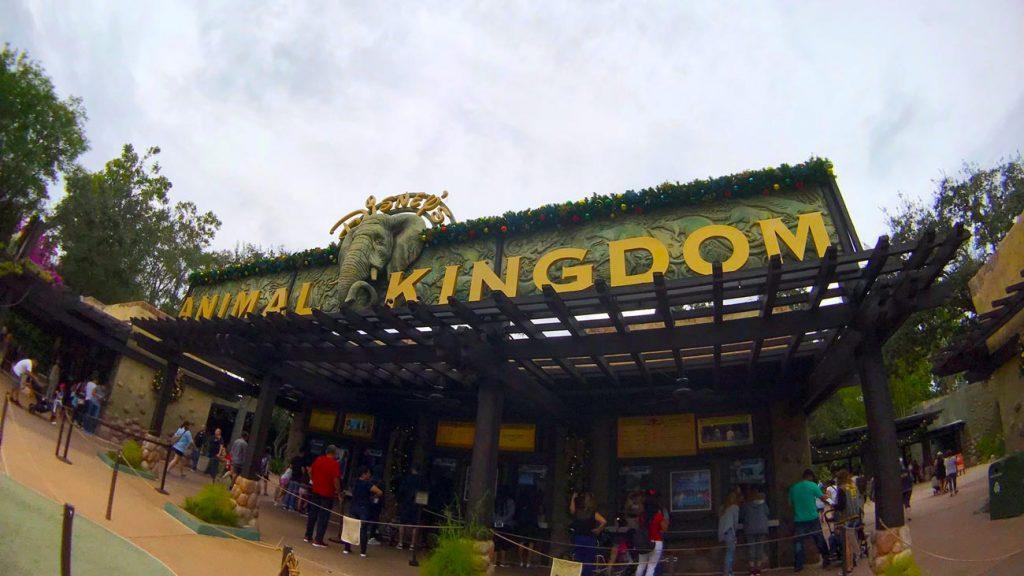 Entrance to Animal Kingdom Walt Disney World