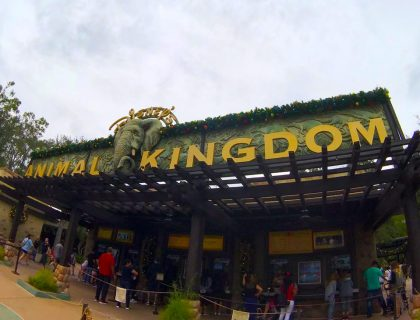Entrance to Animal Kingdom Walt Disney World