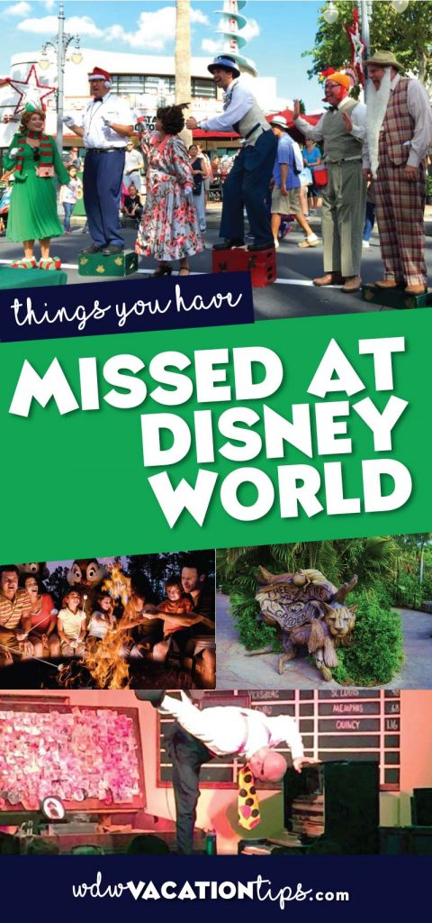 10 Interesting Things You Probably Have Missed at Disney World 3