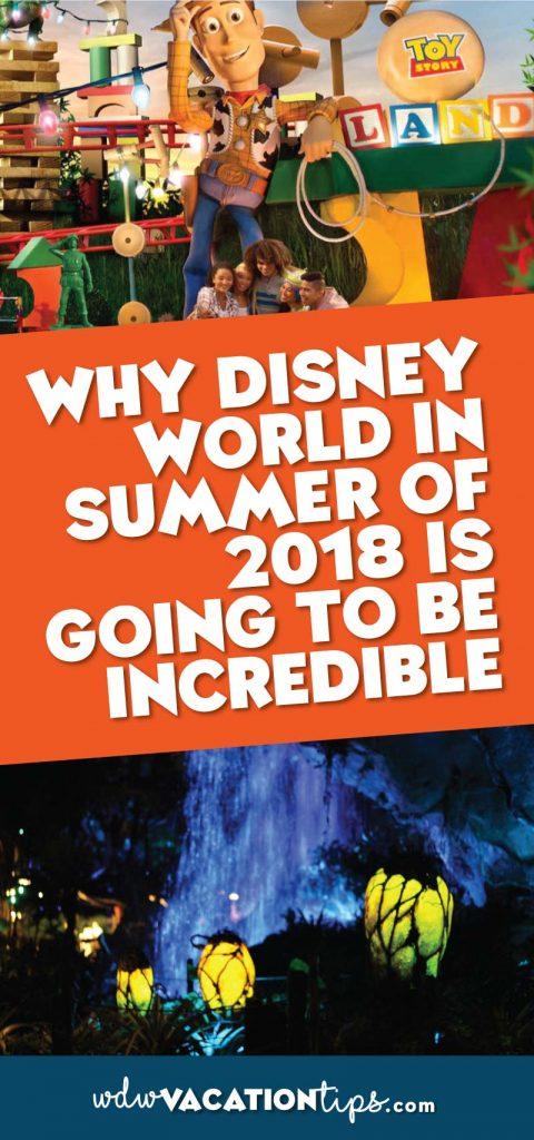 Disney World in summer of 2018