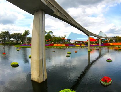 The Ultimate Guide to Epcot's Flower and Garden Festival 52