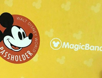 annual passholder magicband