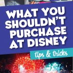 What you shouldn't buy at Disney World