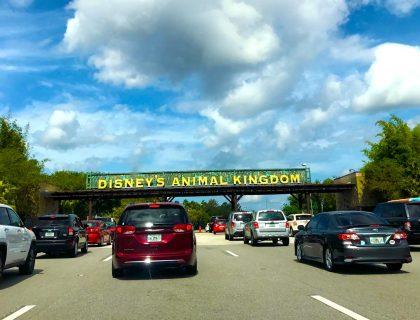 Parking at Animal Kingdom Walt Disney World