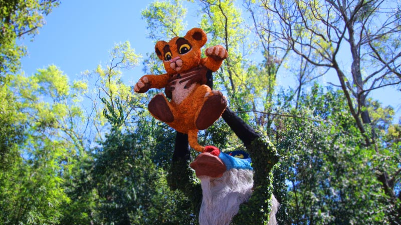 2018 Epcot Flower and Garden Topiary Tour 1