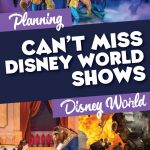 Can't Miss Disney World Shows
