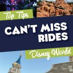 Can't Miss Rides at Disney World