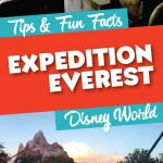 Things you didn't know about Expedition Everest