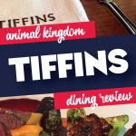 Tiffins Dining Review Animal Kingdom