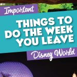 Important things to do the week you leave for Disney World