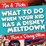 Disney World Meltdown