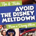 Disney World Meltdown Advice
