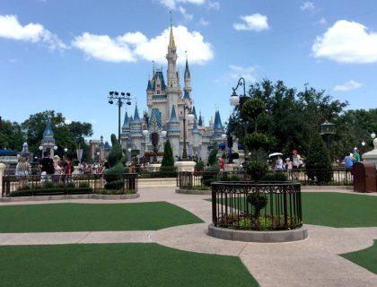 Hub grass magic kingdom disney world