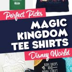 Perfect Shirts to Wear to the Magic Kingdom 1