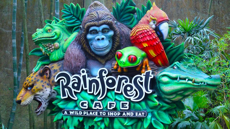 Rainforest Cafe at Disney's Animal Kingdom Dining Review 1