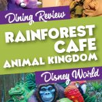 Rainforest Cafe Dining Review