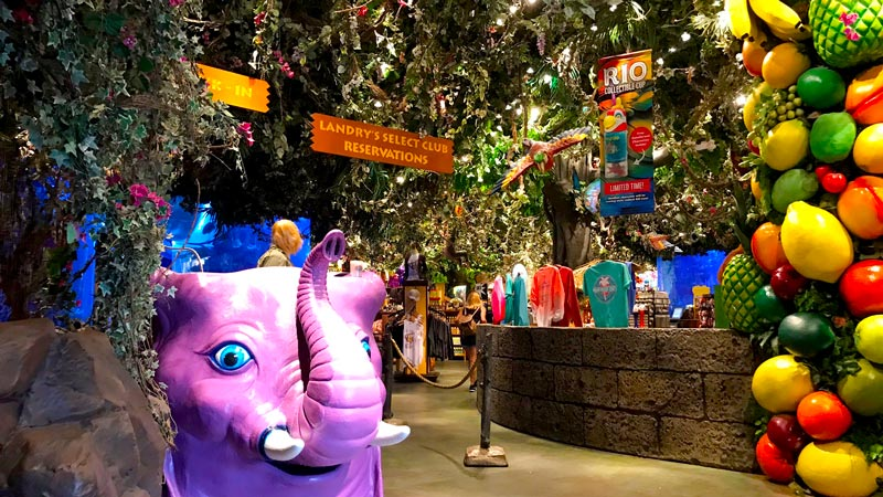 Rainforest Cafe At Disney S Animal Kingdom Discounts