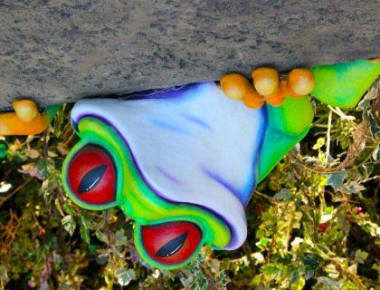 Rainforest Cafe Frog
