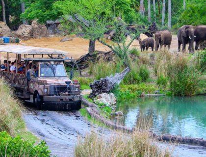 Safari truck Kilimanjaro Safari