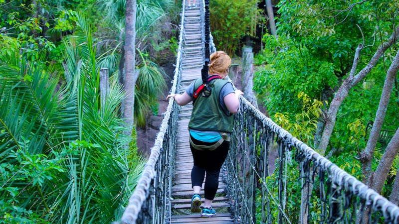 Rope bridge Wild Africa Trek