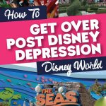 Post Disney World Depression