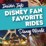 Disney Fan favorite rides at Disney World