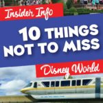 Things Not to Miss at Disney World